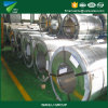 Prime Width 760mm-1250 Galvanized Steel Coil /Gi