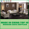 Living Room Home Furniture European Chesterfield Leather Sofa