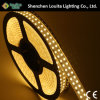 Double Row 5050 Silicone Tube Flexible LED Strip Light