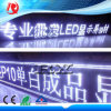 Factory Price P10 White Color LED Display Module 32X16cm