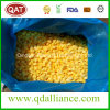 Quick Frozen Diced Mango with Good Price