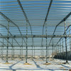 Prefabricated Industrial Steel Structure for Workshop/Warehouse/Shed (ZY351)