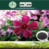 Kingeta Bamboo Charcoal Microbial Agent Polymer Fertilizer