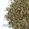 Superfine Chunmee Green Tea (9366)