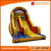 2017 Giant Inflatable Double Lanes Slide for Amusement Park (T4-260)