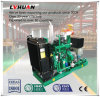 60Hz 30kw Biogas Generator Set for Sewage Disposal Power Generating