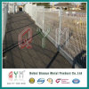Brc Welded Wire Mesh Fence/ Galvanized Brc Welded Mesh