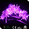Manufacturer Wholesale IP65 Waterproof String Lights for Outdoor Decoration