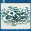 Russian Standard GOST 6402 Spring Lock Washers