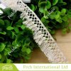 High Quality Cotton Ribbon Lace (FC41029)