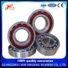(6000-6300 ZZ 2RS) Deep Groove Ball Bearing for Motorcycle, Car