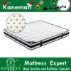Sound off Latex Spring Mattress Star Hotel Mattress