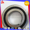 Csk35PP Roller Bearing with High Precision of Good Price (CSK12)