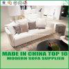 New Arrival Modern Latax Sofa for Living Room