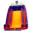 Magician Commercial Inflatable Bounce Slide, Water Slider