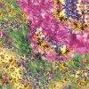Supply Customized Digital Printed Silk Fabric (TLD-0102)