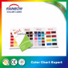 Emulsion Epoxy Floor Paint Color Card for Advertisement