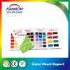 Emulsion Epoxy Floor Paint Color Card for Advertisement