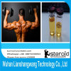 USP Androgen Anabolic Steroid Nandrolone Cypionate 601-63-8 for Cutting Cycle