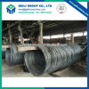 Hot Rolling Steel Rebar in Coil
