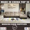 Modern Living Room Genuine Leather Sofa Lz8803