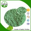 NPK Water Soluble Fertilizer Manufacturer 15-15-30