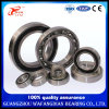 Deep Groove Ball Bearing 6305, 6306, 6307, 6308, 6309- 2RS for Forklift
