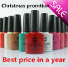 Ibn Gel Nail Polish Promotion with Big Discount