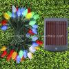 LED Solar Garden Light (C7 Cover)