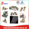 High Quality Diamond Segment Manufacturer