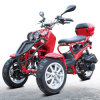 Trike 50cc Kq-T-003 (with EPA, DOT)