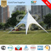 High Quality Luxury Single Pole Tent (FX-10)