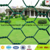 PVC Coated Hexagonal Wire Mesh (Chicken wire) with ISO Certificate