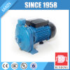 Single Phase AC Motor Pump for Clear Water Home Use