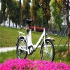 20inch Folding E Bike with Rear Rack