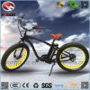750W Fat Tire Electric Beach Bike