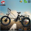 Alloy Frame Fat Tire Adult Pedal Electric Tricycle