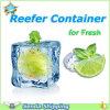 Refrigerating Shipping From Southchina