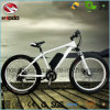 Alloy Frame Fat Tire Electric Beach Mountain Bike for Adult