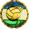 3D Enamel Volleyball Souvenir Medal of Honour of Honor Military