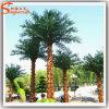 Garden Decoration Fiber Glass Artificial Washington Palm Tree