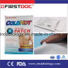 Medical Supply Menthol Ice Gel Hydrogel Pain Relief Patch (LFT001)