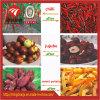 Adjust Fruit/ Vegetable Hot Air Dehydrator Food Drying Machine