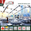 Transparent Wedding Tent Commercial Marquee Clear PVC Roof for Sale