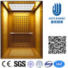 Residence Home Elevator with AC Vvvf Gearless Drive (RLS-221)