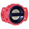 Dual Plate Rubber Coated Check Valve Pn10/16