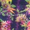 Polyester Printed Fabric/Printed Polyester Fabric
