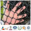 PVC Coated Chain Link Fence (ISO9001: 2008quality)
