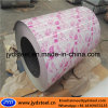 Flower Design PPGI Steel Coil