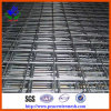 Galvanized Welded Wire Mesh (ISO9001)